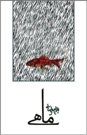 طرح روی جلد ماهی نوشته بهرام بیضایی