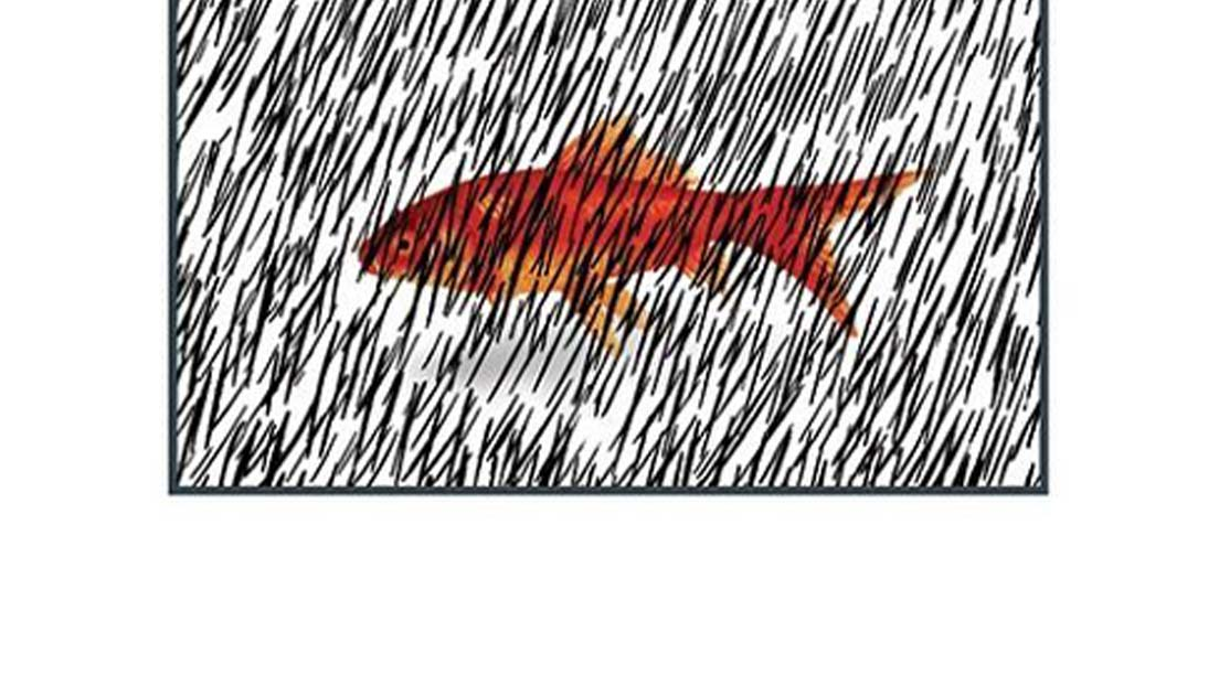 نگاهی به «ماهی» نوشته بهرام بیضایی