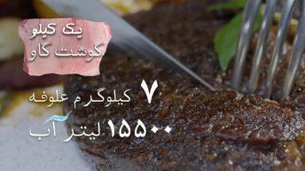 ۲. مصرف گوشت و تغییر اقلیم