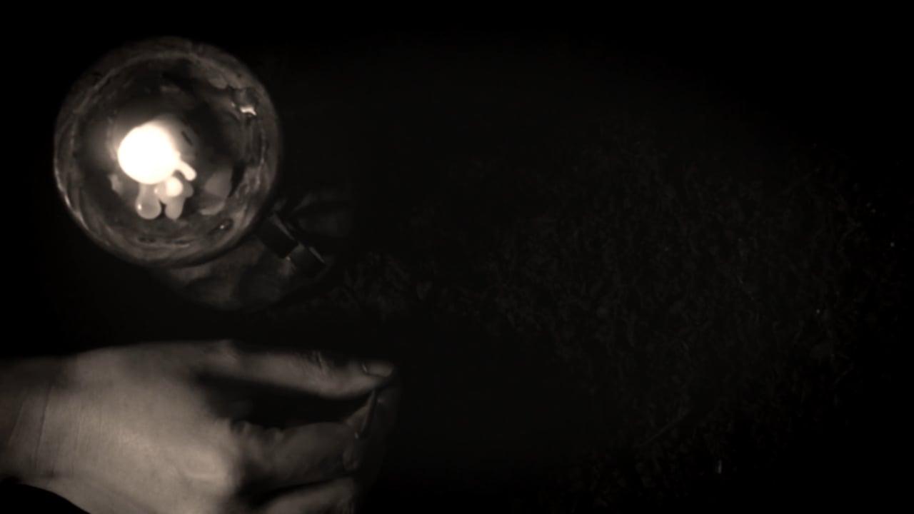 خاک شکوفه آتش (مستندی دربارهی ﺯندگی طاهره قرةالعین)